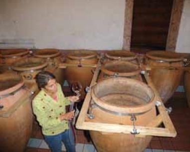 Elisabetha Faradori et les amphores de vin
