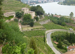 La Jeanraude et le Château Grillet